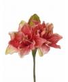 Kunstbloem amaryllis koraal 41 cm