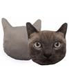 Kussen poes kat donkergrijs 30 cm