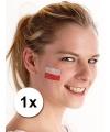 Landen vlag tattoo polen