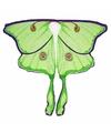 Maanvlinder vleugels voor kinderen
