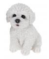 Maltezer honden beeldje voor binnen 17 cm