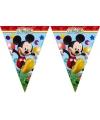 Mickey mouse vlaggenlijn 2 3 meter