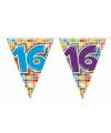 Mini vlaggenlijn 16 jaar