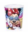Minnie mouse prullenbak gekleurd