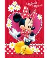Minnie mouse puzzel 260 stukjes
