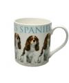 Mok king charles spaniel hond