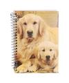 Notitieboekje a6 golden retriever honden