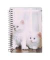 Notitieboekje a6 witte kittens