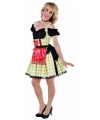 Oktoberfest luxe groene dirndl voor dames