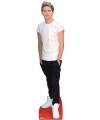 One direction foto bord niall horan