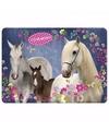 Paarden placemat blauw 43 x 30 cm