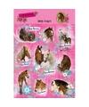 Paarden stickers 10 stuks set 3