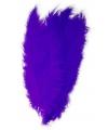 Paarse spadonis sierveer 50 cm
