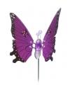 Paarse vlinder op stok 59 cm