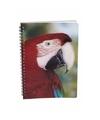 Papegaaien notitieboek 3d 21cm