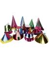 Papieren metallic feesthoedje voor volwassenen