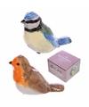 Peper en zout setje vogeltjes