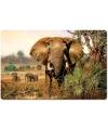 Placemat olifant 3d 40 cm