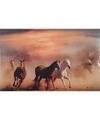 Placemat paarden 3d 28 x 44 cm type 1