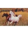Placemat paarden 3d 28 x 44 cm type 3