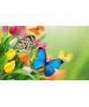 Placemat vlinders 3d 28 x 44 cm