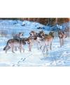 Placemat wolven 3d 28 x 44 cm