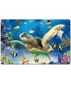 Placemat zeeschildpad 3d 40 cm