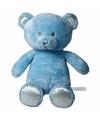 Pluche blauwe beer 28 cm