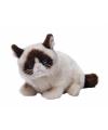 Pluche grumpy cat knuffel 30 cm