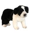 Pluche hond border collie 39 cm