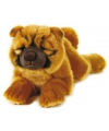 Pluche honden knuffel chow chow liggend 40 cm