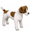 Pluche knuffel jack russell 53 cm