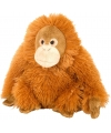 Pluche knuffel orang utan oranje 20 cm