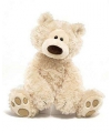 Pluche teddybeer philbin 33 cm