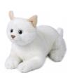Pluche witte liggende kat knuffel 20 cm