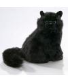 Pluche zwarte perzische katten knuffel 30 cm