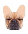 Portemonnee franse bulldog hond 10 x 11 cm