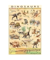 Poster dinosauriers 61 x 91 cm