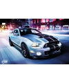 Poster ford shelby 61 x 91 5 cm