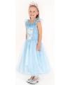 Prinses jurkje blauw
