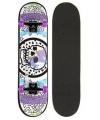 Professioneel skateboard wit paars zwart