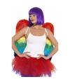 Regenboog veren vleugels 68 cm