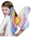 Regenboog vlinder vleugels voor kinderen
