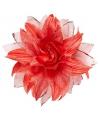 Rode haarbloem met glitters