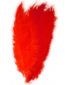 Rode spadonis sierveer 50 cm