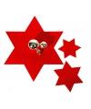 Rode ster onderzetter set van 6