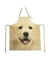 Schort labrador hond