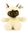 Siamese kat knuffel 23 cm