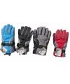 Ski handschoenen voor heren