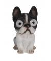 Solar tuinbeeld franse bulldog hond 16 cm